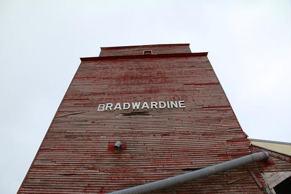 Bradwardine - looking up