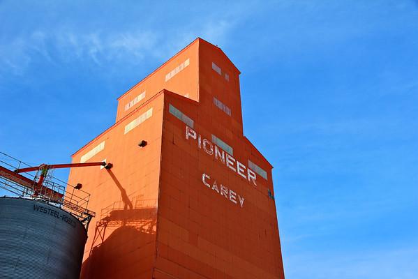 Carey - Pioneer