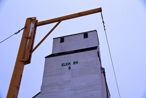 Elkhorn - framed