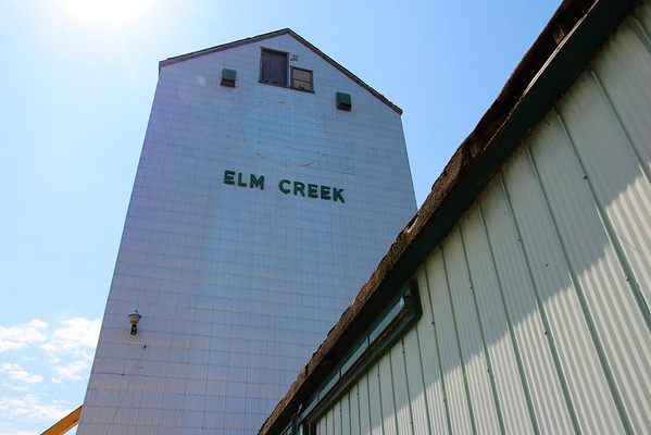 Elm Creek - looking up