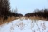 Libau - unused tracks