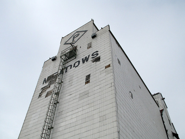 Meadows - looking up