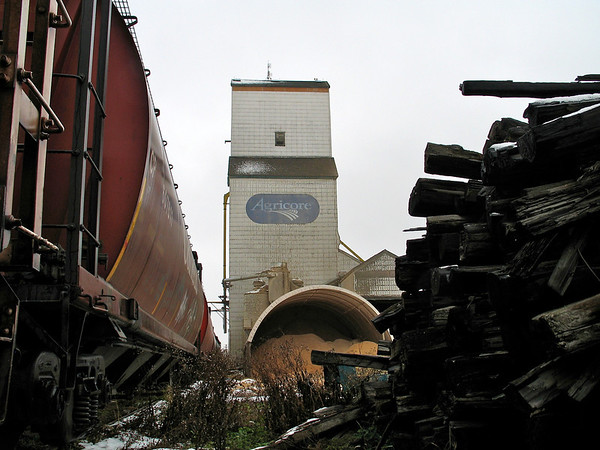 Netley - railway ties and grain cars