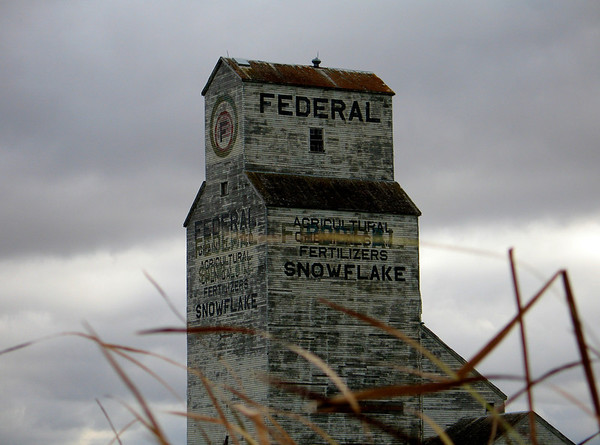 Snowflake - Federal