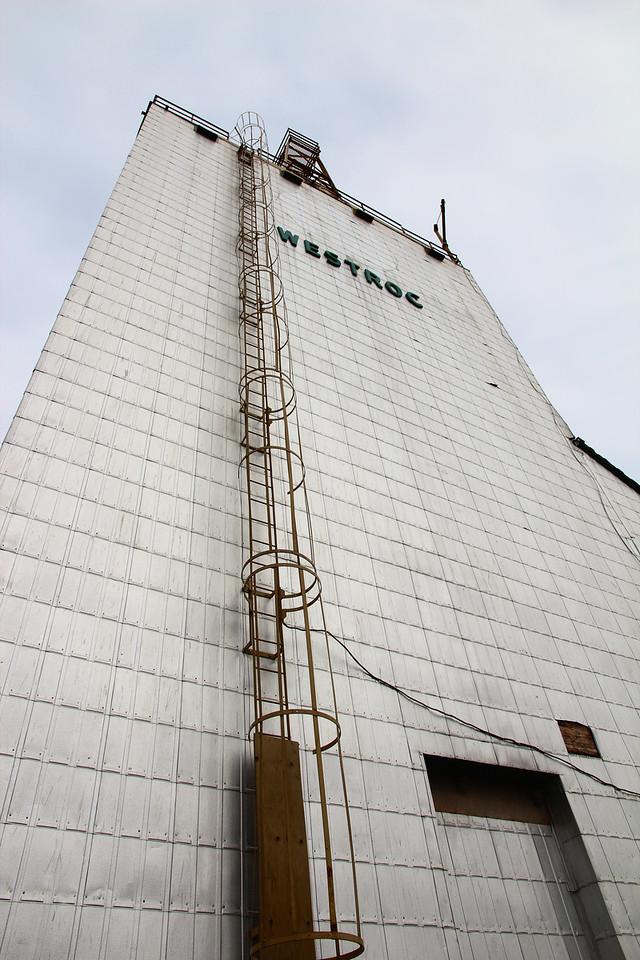 Westrock - ladder (portrait)