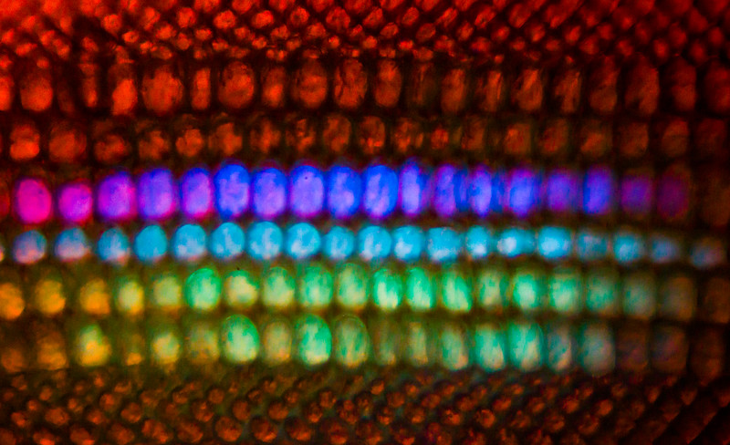 Fluorescent ultraviolet optical filters in the midband of the eye.