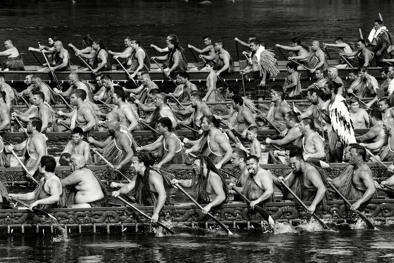 En 1858, en réaction aux nombreuses pressions exercées par le pouvoir colonial britannique, plusieurs tribus maories ont voulu s'unifier autour d'un roi. Depuis 1895, chaque automne se déroulent à Ngaruawahia, face au marae du roi et en présence de celui-ci, les grandes régates de Turangawaewae. C'est l'occasion de sortir les plus beaux wakas du pays et de faire s'affronter les meilleurs équipages de rameurs sur la rivière Waikato.<br /> Waikato/Nouvelle-Zélande