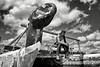 """Jeune charpentier de marine maori de la Waka Building School assis à l'avant de """"Te Aurere"""" (premier grand waka traditionnel à avoir refait en 1992 un voyage transpacifique sur les traces des origines du peuple maori).<br /> Doubtless Bay/Northland/Nouvelle-Zélande"""