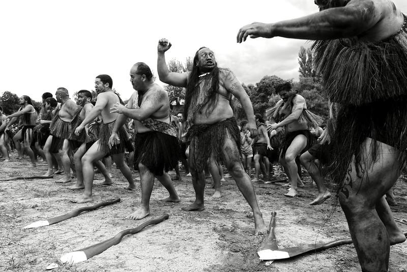 Le haka est une danse maorie ritualisée. Accompagnée de chants scandés avec violence, elle a souvent pour fonction d'impressionner ou de défier un adversaire. Ces rameurs participant aux grandes régates de Turangawaewae, sur la rivière Waikato, ne pourraient envisager de concourir sans céder à ce rituel ancestral. Ngaruawahia/Waikato/Ile du Nord/Nouvelle-Zélande