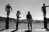 Quatre jeunes Maoris s'exerçant au plongeon dans le port de Wellington. Wellington/Ile du Nord/Nouvelle-Zélande
