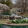 Amy Brenner, Eden Spring, 11 x 14 photo framed to 16x20, $150, poolsharkfl@yahoo.com, 513.325.6336