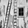John Butler. Ladders, Digital Photo, 20 x 24, $95, Jbutler2@isoc.net, 513-874-524