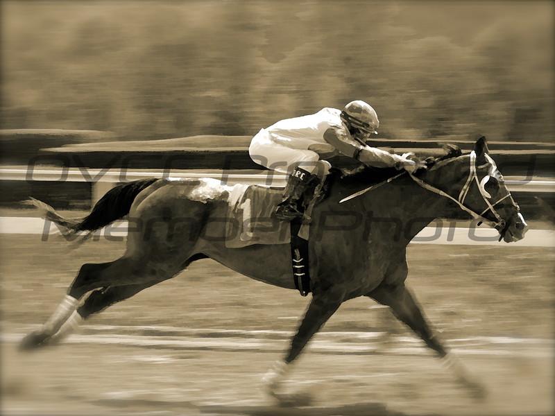 Winning Horse