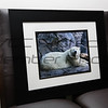 Tiffany Schulz, Polar Exposure, Framed print, 20x24, $120, tschulz@tsi-photography.com, 513-939-8187