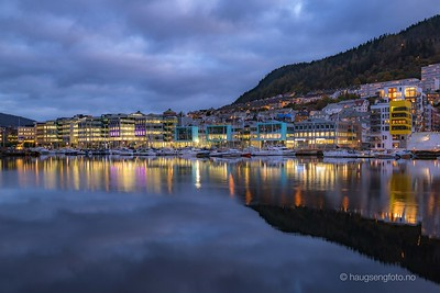 Damsgårdsundet, Solheimsviken, Nygårdstangen, Bergen