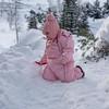 Tiny Trolls of Norway