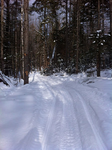 One Snowmobile Track
