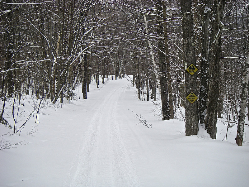Feeder trail from the Notch Road parking lot.