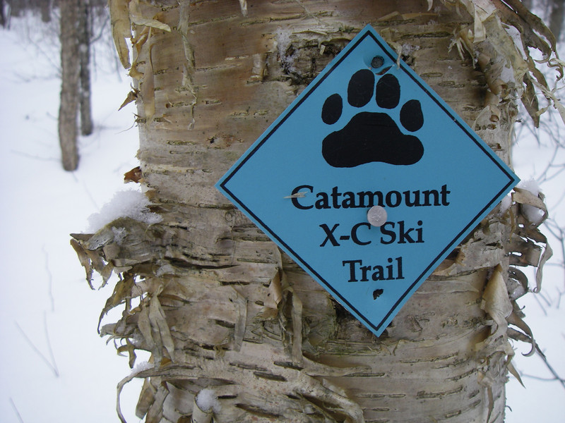 We share the trail system with lots of users!