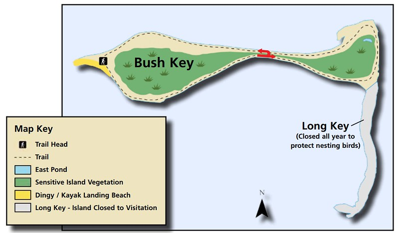 Dry Tortugas National Park (Bush Key)
