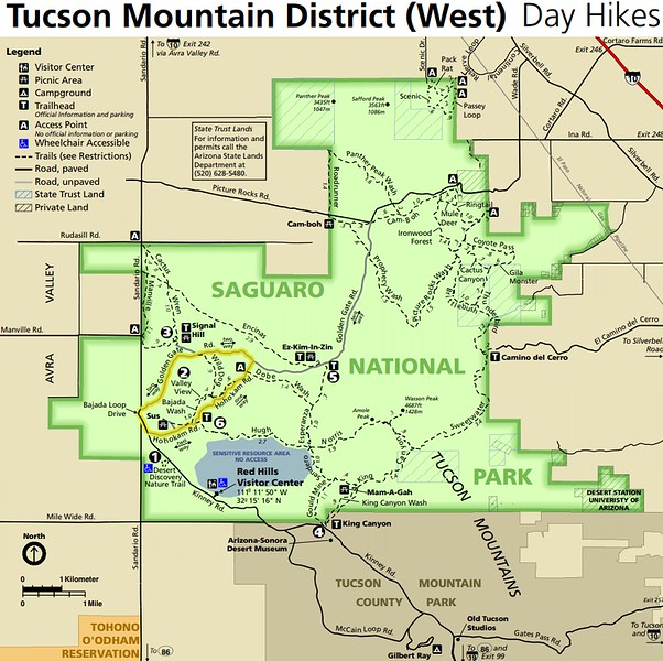 Saguaro National Park (Tucson Mountain District)