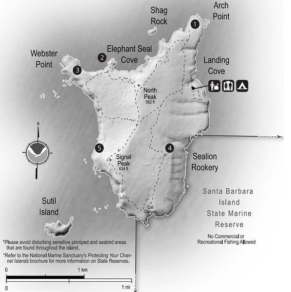 Channel Islands National Park (Santa Barbara Island)