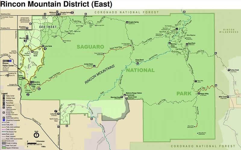 Saguaro National Park (Rincon Mountain District)