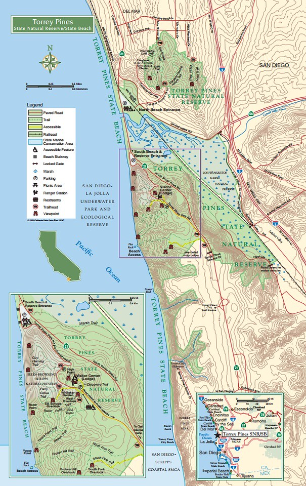 Torrey Pines State Natural Reserve & Beach