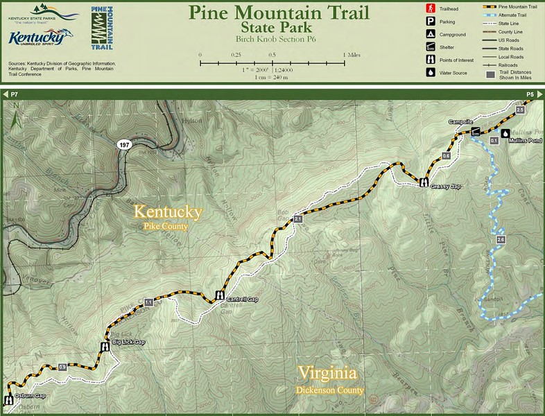 Pine Mountain State Scenic Trail -- Birch Knob Section (P6)