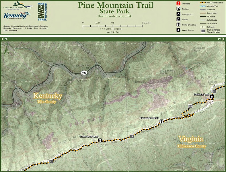 Pine Mountain State Scenic Trail -- Birch Knob Section (P4)