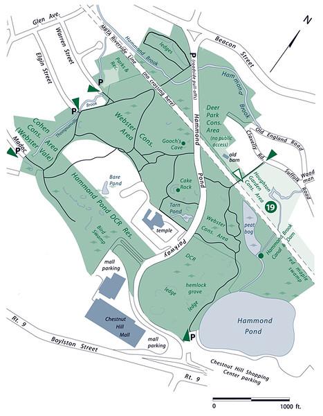Hammond Pond Reservation