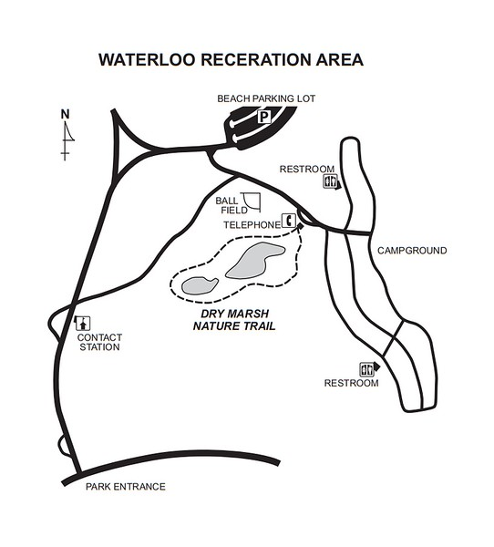 Waterloo Recreation Area (Dry Marsh Nature Trail)