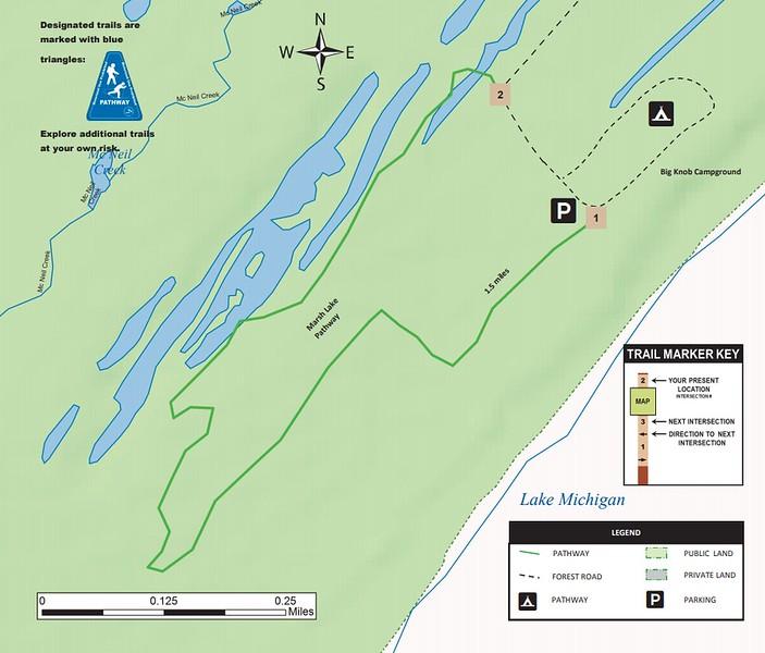 Marsh Lake Pathway