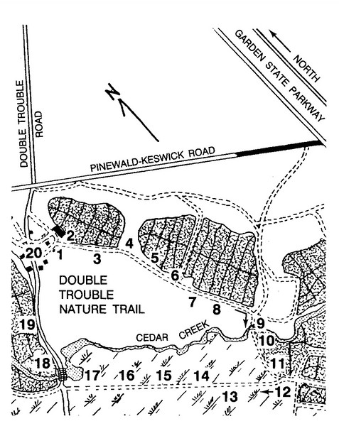 Double Trouble State Park (Double Trouble Nature Trail)