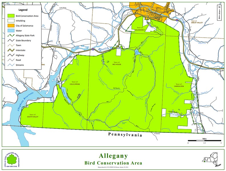 Allegany State Park (Bird Conservation Area)