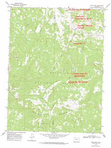 Map showing the forest access road to the Prong Creek Trail in the Elkhorn Mountains of Colorado.  USGS GeoTIFF DRG 1:24000 Quad of Buck Point. Product:394708