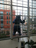 """Denver Convention Center's Peeping """"Bear"""" from the inside"""