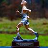 Löparstaty för 50 fullbordade maraton