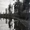 GNP Lake Reflection