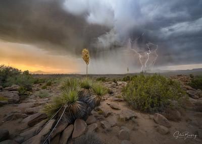 Elemental Arizona II