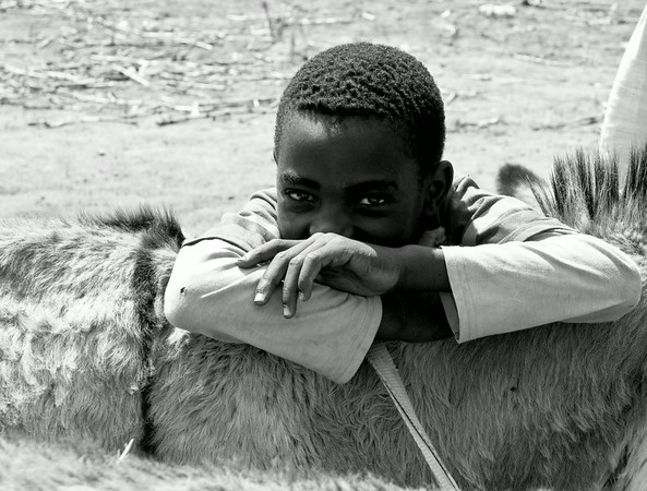 Boy and his Burro