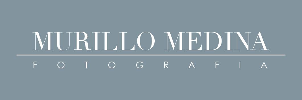 logotipo murillo medina fotografia 271213 fundo cinza