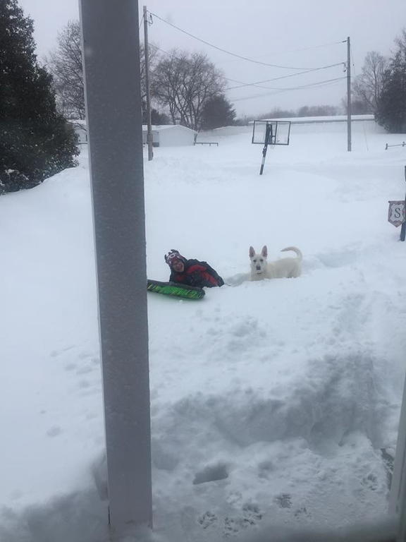 . Photo Courtesy Carrie Sgroi Gabe and Chase play in the snow in Oneida on Wednesday, March 15, 2017.