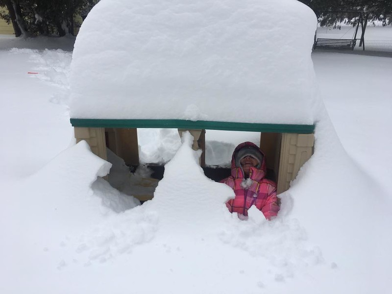 . Photo Courtesy Michelle Anne Kennedy checks out her buried house in Rome, N.Y., on Wednesday, March 15, 2017.