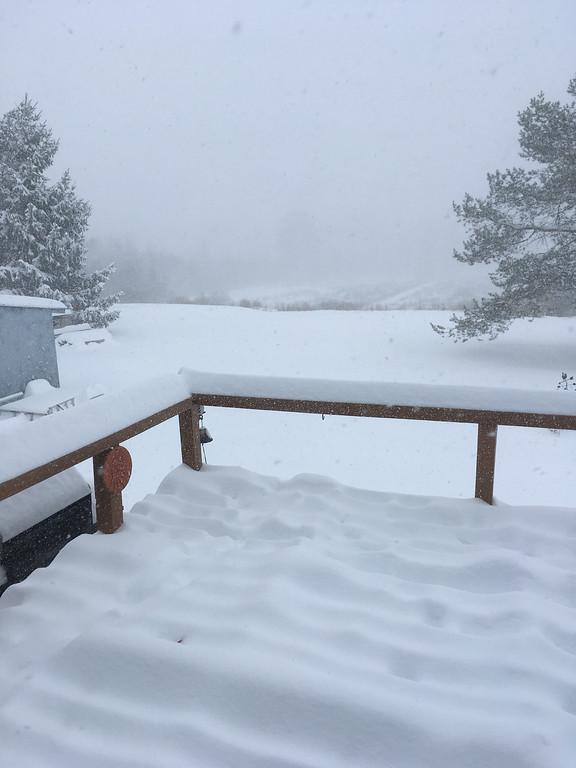 . Karen Alvord - Oneida Daily Dispatch Winter Storm Stella buried parts of Munnsville in snow on Wednesday, March 15, 2017.