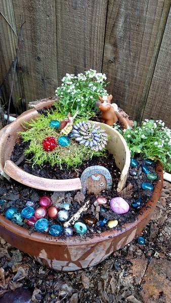 Elena's fairy garden