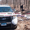 033017  Wesley Bunnell | Staff<br /> <br /> Plainville detectives enter the woods off of Loon Lake Road to aid in the search for missing hiker Arthur Williams. Williams was last seen on Saturday.