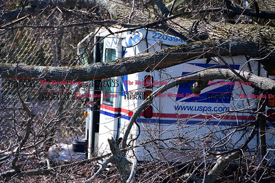 3/22/2017  Mike Orazzi | Staff Damage after a Norway Maple tree fell on a US Postal service truck in Bristol  Wednesday morning.