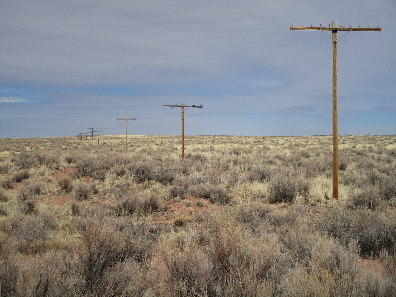 These old phone poles actually mark the former Route 66 in the PFNP.  Kind of a boring photo, but the history is cool.  Picture station wagons loaded with families, pre-interstate, heading west to explore America.