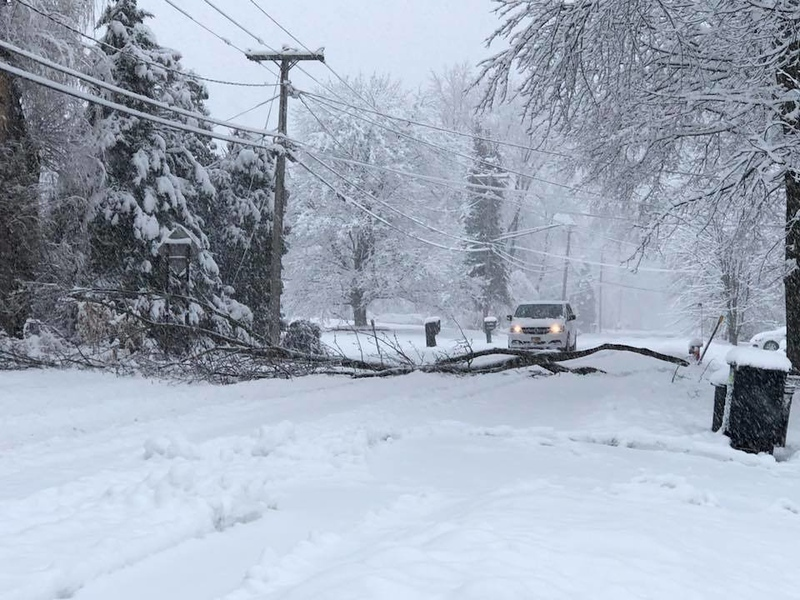 . This photo by Diane Dunne shows a tree laying across Main Street in Verona.